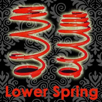 Lower Spring