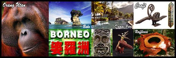 Holiday Borneo1