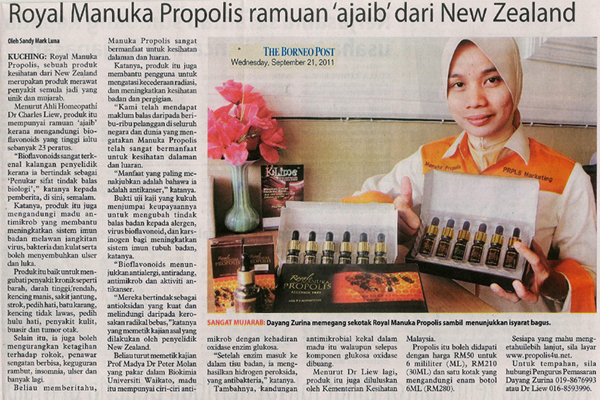 Newspapaper 2