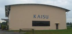 KAISU (M) SDN BHD